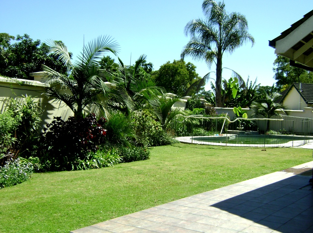 The garden at our home at Rugare Mews