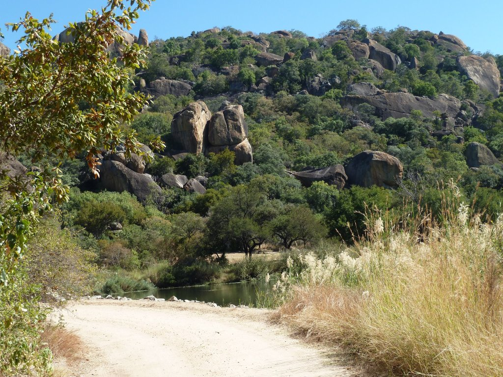 Typical African scenery in Zimbabwe