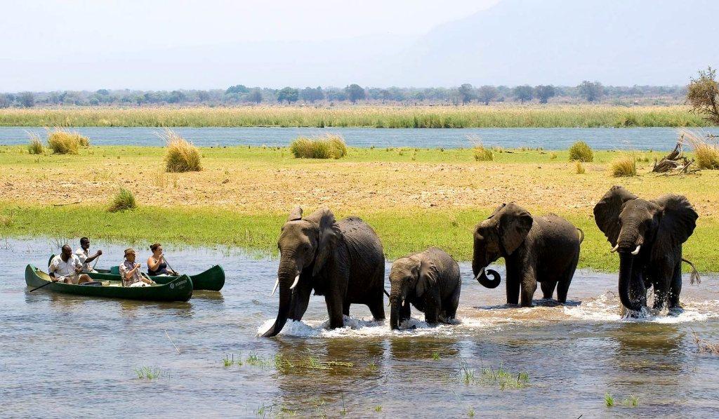 Game Veiwing in Zimbabwe