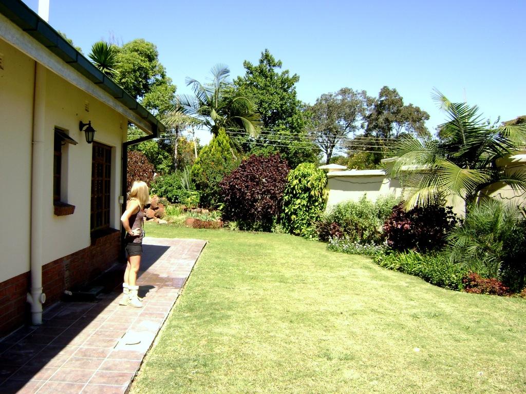The yard at Rugare Mews