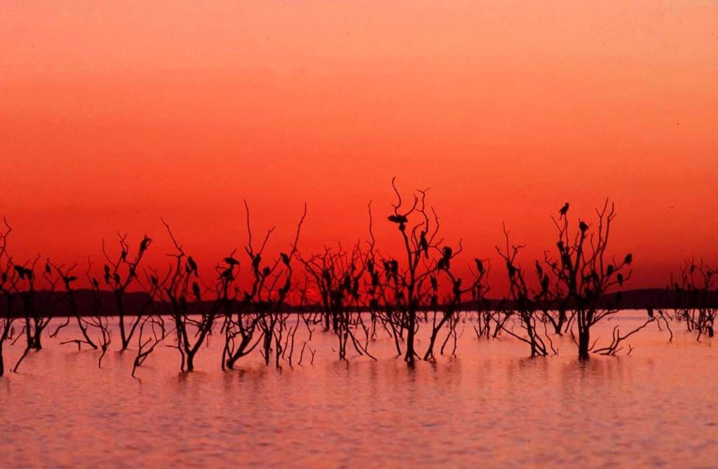 A beautiful sunset on Lake Kariba